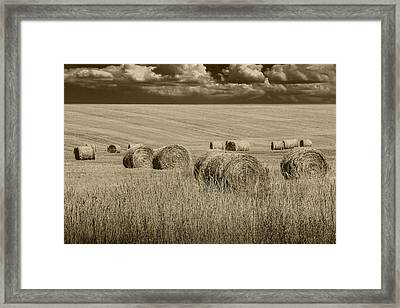 Summer Harvest Field With Hay Bales In Sepia Framed Print