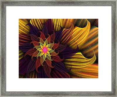Summer Harvest Flower Framed Print