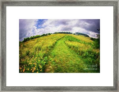 Framed Print featuring the painting Summer Hike Through Blue Ridge Flowers Ap by Dan Carmichael