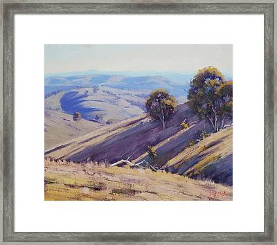 Summer Hillside, Mudgee Framed Print