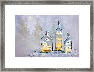 Summer In A Bottle Framed Print