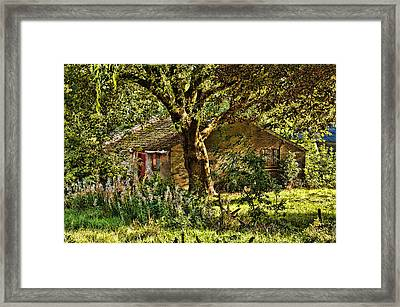 Summer In Holland-2 Framed Print