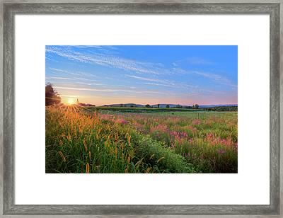 Summer In The Hills 2017 Framed Print