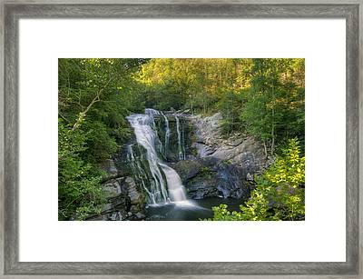 Summer In Water And Green Framed Print by Darrell Young