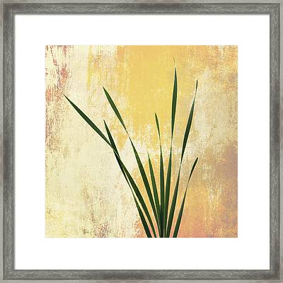 Framed Print featuring the photograph Summer Is Short 1 by Ari Salmela