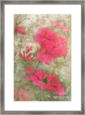 Summer Joy Framed Print