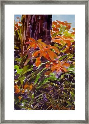 Summer Framed Print by JULES Buffington