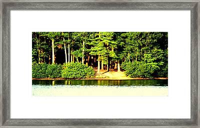 Summer Lake Framed Print by Aron Chervin
