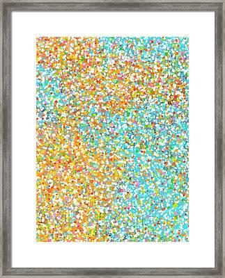 Summer Lights Framed Print