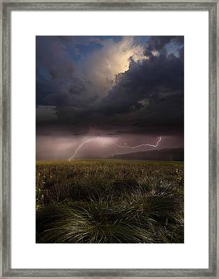 Summer Lights Framed Print by Franz Schumacher
