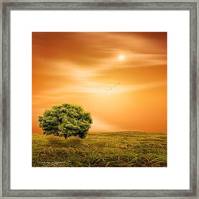 Summer Framed Print by Lourry Legarde