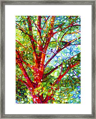 Summer Medley Framed Print