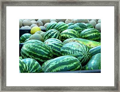 Summer Melons Framed Print