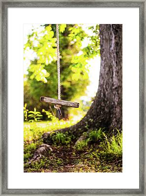 Framed Print featuring the photograph Summer Memories On The Farm by Shelby Young