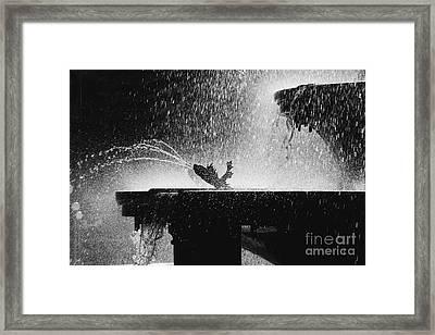 Summer Memory Framed Print by Hideaki Sakurai