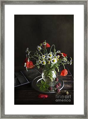 Summer Mood Framed Print by Elena Nosyreva