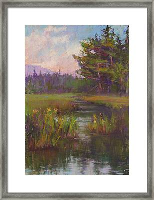Summer Morning Beaver Marsh Framed Print by Susan Williamson