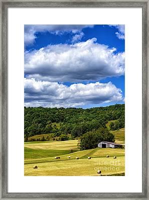Summer Morning Hay Field Framed Print by Thomas R Fletcher