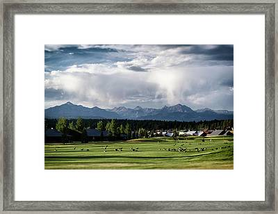 Summer Mountain Paradise Framed Print