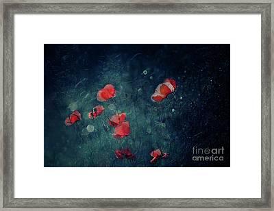 Summer Night Framed Print by Agnieszka Mlicka