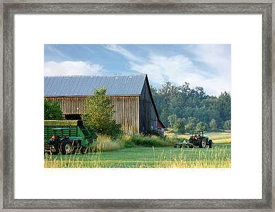 Summer On The Farm Framed Print by Barbara  White