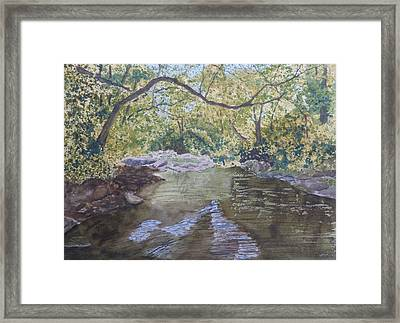 Summer On The South Tow River Framed Print by Joel Deutsch