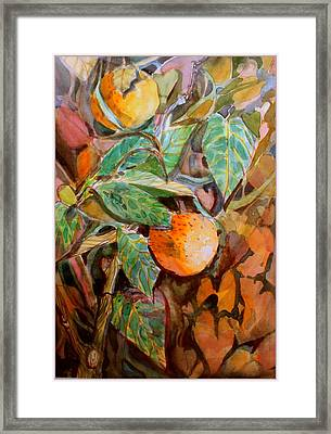 Summer Oranges Framed Print by Mindy Newman