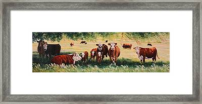 Summer Pastures Framed Print by Toni Grote