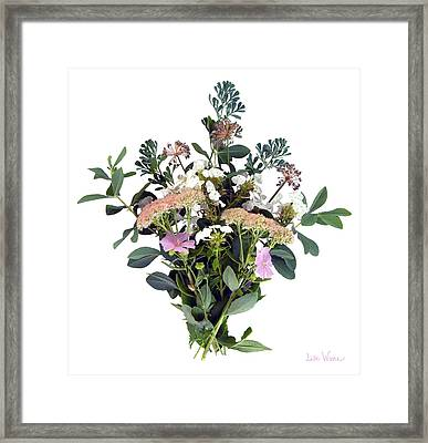 Summer Perrenials Framed Print by Lise Winne