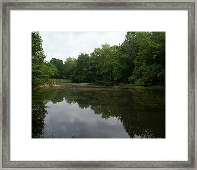 Summer Pond Framed Print