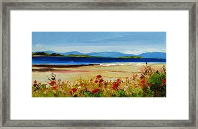 Summer Poppies Framed Print by Coral May Barclay