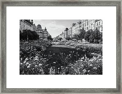 Framed Print featuring the photograph Summer Prague. Black And White by Jenny Rainbow