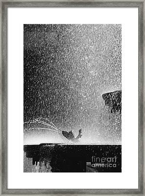 Summer Rain Framed Print by Hideaki Sakurai