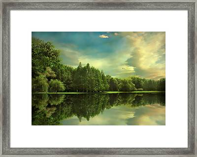 Summer Reflections Framed Print by Jessica Jenney
