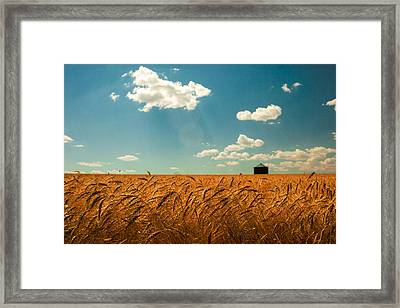 Summer Respit Framed Print by Todd Klassy