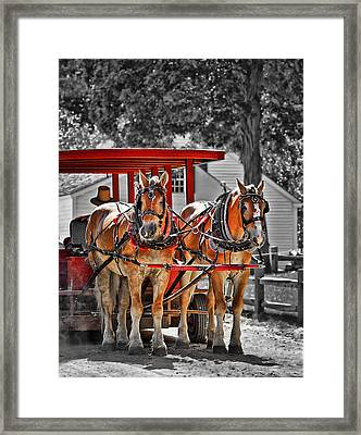 Summer Ride Framed Print by Evelina Kremsdorf