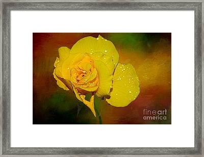 Summer Rose By Kaye Menner Framed Print