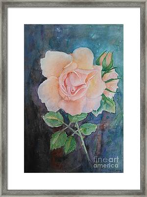 Summer Rose - Painting Framed Print by Veronica Rickard