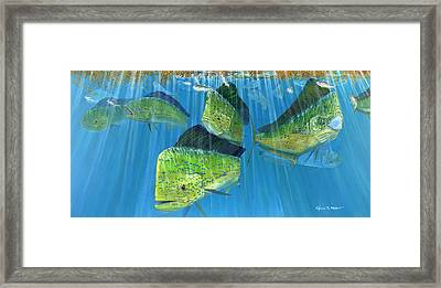 Summer School Framed Print by Kevin Brant