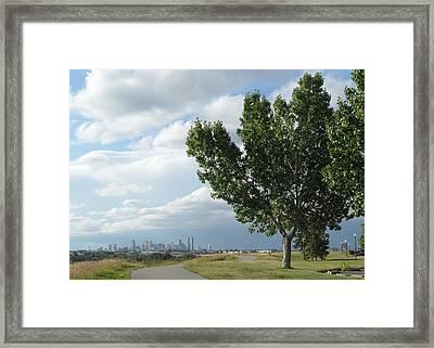Summer Sentinel Framed Print