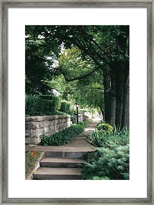 Summer Shade Framed Print