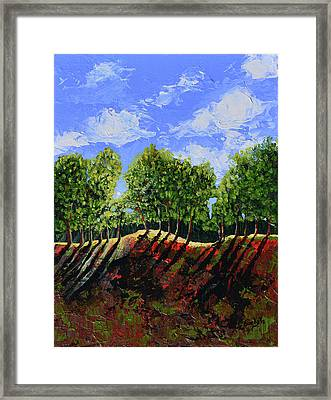 Summer Shadows Framed Print by Donna Blackhall