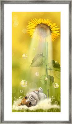 Summer Shower Framed Print by Veronica Minozzi