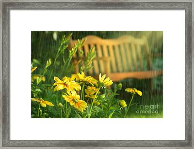 Summer Showers Framed Print by Sandra Cunningham