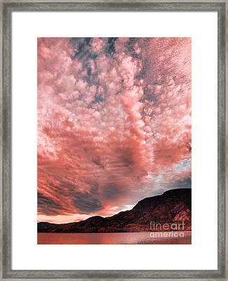 Summer Skies Framed Print by Tara Turner