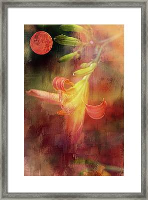Summer Solstice Framed Print by Theresa Campbell