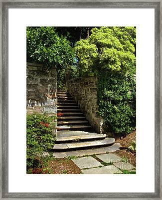 Framed Print featuring the photograph Summer Steps by Mark Miller