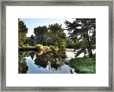 Summer Still Framed Print by Betsy Zimmerli