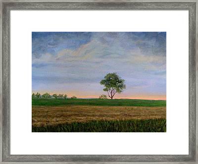 Summer Storm Framed Print by Evelynn Eighmey