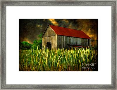 Summer Storm Framed Print by Lois Bryan